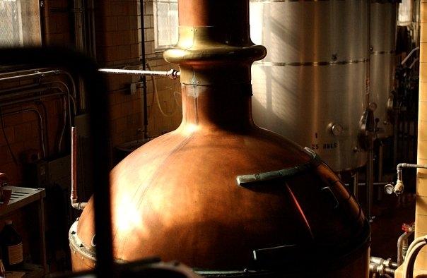 the boston beer company 2 essay
